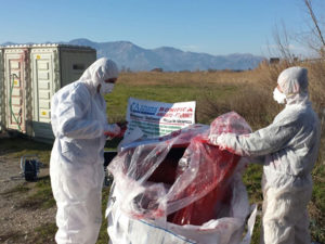 Smaltimento Amianto Campania